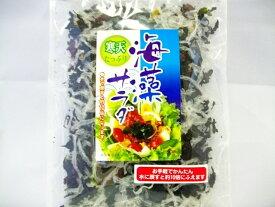 【メール便送料無料】 お手軽・かんたん!寒天たっぷり海藻サラダ 40g サラダはもちろん、酢の物・汁物にも! 【smtb-ms】