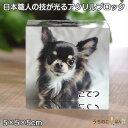 フォトブロック 5cm角■写真 アクリル ブロック ペット メモリアル オーダーメイド フォトキューブ 肉球 ペット供養 …