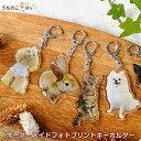 はいちーず■写真 キーホルダー ペット メモリアル オリジナル プリント オーダーメイド 犬 猫 子供 キーホルダー プ…