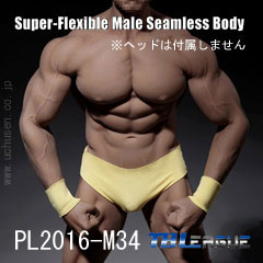 【TBLeague】PL2016-M34 male super flexible seamless body with metal skeleton TBリーグ 1/6スケール シームレス男性ボディ(ヘッドなし)