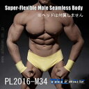 【TBLeague】PL2016-M34 male super flexible seamless body with metal skeleton TBリーグ...