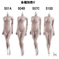 【TBLeague】female seamless body PALE series not head S01A S04B S07C S10D TBリーグ 1/6スケール シームレス女性ボディ ペール(ヘッドなし)