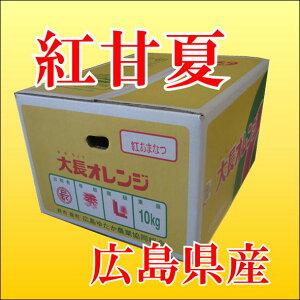 広島産 紅甘夏  10kg Lサイズ