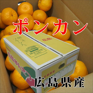 広島 ポンカン 4.5Kg 赤秀L〜Mサイズ 酸味少なく甘いみかん