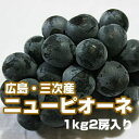 広島・三次産 ニューピオーネ 1kg(2房入り)