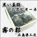 広島・三次産ニューピオーネ2kg(4房入り) ランキングお取り寄せ