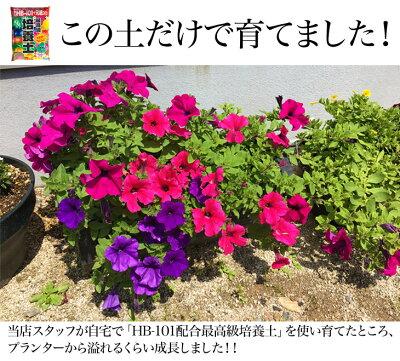 【肥料サンプルのオマケ付】最高級培養土30L2袋セット/花用土土培養土野菜ガーデニングセットサンプル送料無料