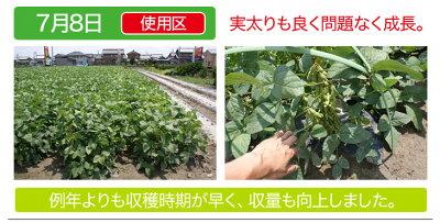 【送料無料/2袋セット】連作障害ブロックW10kg顆粒タイプ農業用土壌改良剤連作障害用土土微生物
