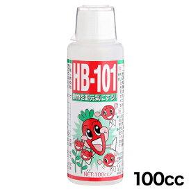 【ポイント10倍/送料無料】 天然活力剤 HB-101 100cc / 定形外 肥料 100ML HB101
