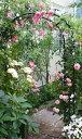組み立て簡単!フラワーアーチ W150-H / バラ アーチ ローズ 玄関 入り口 ゲート 庭 ガーデン