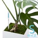 【ポイント2倍】【リニューアル/中芯交換可】 水分計 サスティ Sサイズ 水やり サスティー SUS・tee 多肉植物 野菜 観葉植物 蘭 洋ラン…