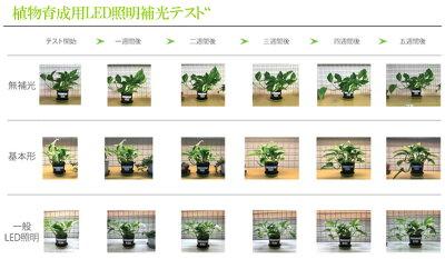植物育成用LEDライトプラントマグネット棚バー55cm単品植物育成LEDライト