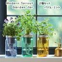 【送料無料/2個セット】 水耕栽培 キット モダンスプラウト ガーデンジャー バジル ミント Modern Sprout Garden Jar Cocktail 2PK 種 …