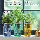 【送料無料/3個セット】 水耕栽培 キット モダンスプラウト ガーデンジャー バジル ミント パクチー Modern Sprout Garden Jar Asian 3…