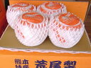 木戸さんの荒尾ジャンボ新高梨(荒尾梨)(7.5kg箱10玉入り)お届けは10月初旬から中旬頃での順次の発送予定です。