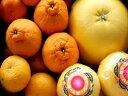【訳あり】熊本の柑橘詰め合わせ【送料無料】晩白柚入り7.5kg箱入りご予約承り中