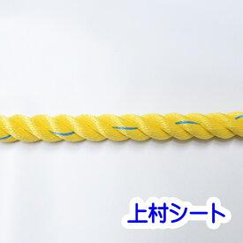 親綱ロープ のり面ロープ スーパーセーブロープ 直径18mm×200m 1巻売り