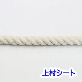 綿ロープ コットンロープ 生成り カット販売 直径20mm 太い ロープ