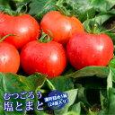 【送料無料】塩トマト/むつごろう約2.0kg 熊本産 ミネラル豊富!糖度8度以上保証 フルーツ感覚 しあわせ畑 とまと…