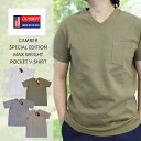 CAMBER キャンバー SPECIAL EDITION MAX WEIGHT POCKET V-SHIRT 別注品 半袖 マックスウェイト Vネックポケット付 Tシ…