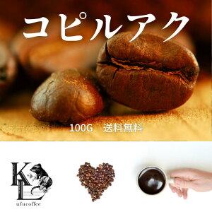コピルアック 送料無料 新入荷 天然100% ジャコウネココーヒー 100g コピルアク シベットコーヒー コーヒー 珈琲豆 コーヒー豆 自家焙煎コーヒー ドリップコーヒー アイスコーヒー豆 浅煎り