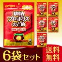 通販UHA味覚糖 プロポリスのど飴 6袋セット(52g)