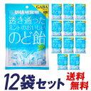 UHA味覚糖 透き通ったミントのおいしいのど飴(92g)12袋 送料無料