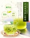 【DM便で送料無料】日本茶 水出し緑茶 水出し煎茶 ティーバッグ ペットボトル・水筒にも ティーパック(4g×10包)水だしでおいしいお茶 冷茶 5個購入で1個プレゼント!