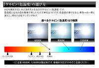 【4980円→980円大幅値下げ!】純正交換用HIDバルブD2R/D2S共通タイプ