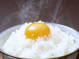 【TV登場】【送料無料】【うこっけい たまご】天来烏骨鶏卵 10個入り10P09Jul16