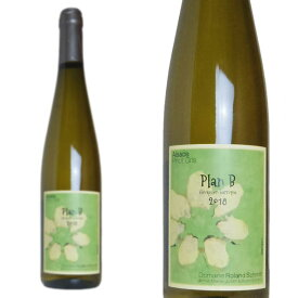 アルザス ピノ・グリ プラン・ベ 2018年 ドメーヌ・ローラン・シュミット 750ml (フランス アルザス 白ワイン)