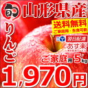 【出荷中】 りんご 訳あり サンふじ 5kg (ご家庭用/13玉〜20玉入り/生食可)【あす楽対応/山形県産/リンゴ/林檎/蜜入り…
