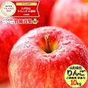 【出荷中】 訳あり りんご サンふじ 10kg (ご家庭用/22玉〜46玉入り/生食可)【山形県産/リンゴ/林檎/蜜入り/自宅用/家…