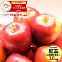 【2020/出荷中】山形県産 ご家庭用 りんご 紅玉(こうぎょく) 3kg(8玉〜18玉入り/生食可/加工用)【山形産/りんご/リン…