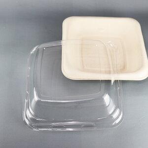バガス 再生紙製容器 6インチ角浅底トレイ用 リッド PET 蓋 138×138×39 300個セット (サトウキビの搾りカスから再生された堆肥可能なパルプ製)業務用 大容量 (メーカー直送品)