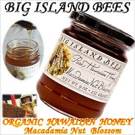 【食品】ハワイアン雑貨【BIG ISLAND BEES】マカダミアナッツオーガニックハワイアンハニー【ハワイ 食材 食品】【Hawaii】【HAWAIIAN】