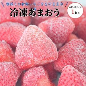 特別栽培 うるう農園 計2kg 冷凍あまおう 冷凍かおりの各1kgずつ 品種食べ比べ 大容量 お買い得品