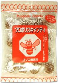 ソーキ プロポリスキャンディ 100g 花粉症 対策 のど飴 坑酸化 のどの痛み ニッキ メントール