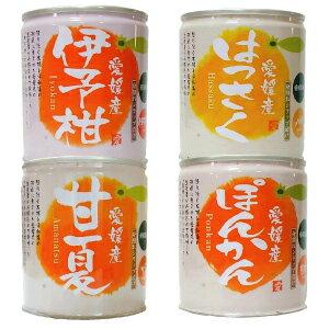 愛媛産柑橘缶詰(伊予柑・はっさく・ぽんかん・甘夏)セット12個入【送料無料】