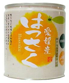 愛媛産はっさく缶詰12個入【送料無料】