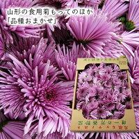 食用菊[もってのほか(品種おまかせ)]1kg