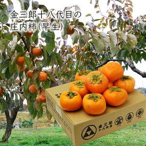 【早生】金三郎十八代目の庄内柿MM〜MAサイズ3kg(20〜24玉前後)