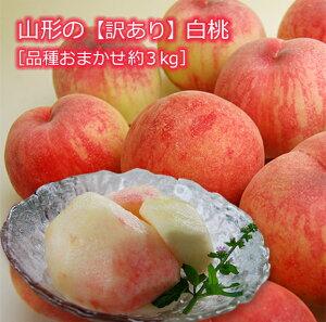 《訳あり》山形の白桃 品種おまかせ約3kg(7〜15玉)