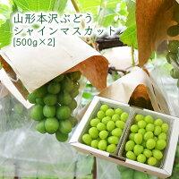 山形本沢ぶどうシャインマスカット約1kg(パック入)[500g×2]
