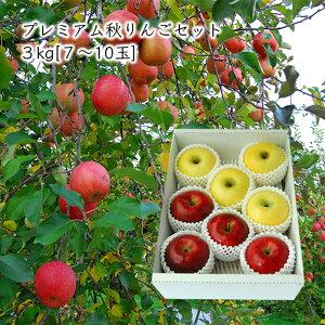 プレミアム秋りんごセット約3kg(7〜10玉)[化粧箱入]