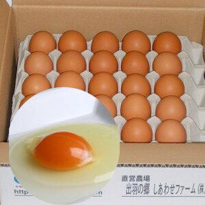 純国産鶏種もみじの卵[25個入](Lサイズ)箱入