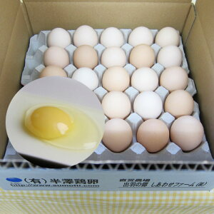 鶏卵「いではのさくら白」25個入(サイズミックス)箱入