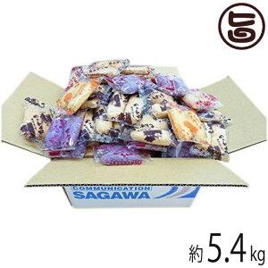 訳あり ちんすこう もりもり詰め合わせ300袋(600本) 約5.4kg 沖縄 土産 定番 人気 送料無料