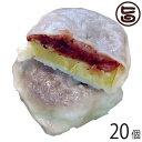 いきなり団子 黒あん10個×2 条件付き送料無料 熊本県 九州 復興支援 人気 和菓子 熊本銘菓