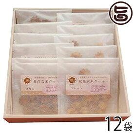 お中元 ギフト 愛荘玄米クッキー5種セット(大)30g×12袋 条件付き送料無料 滋賀土産 滋賀 土産 関西 人気 贈り物